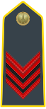 Rank insignia of appuntato of the Guardia di Finanza.svg