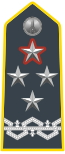 Rank insignia of generale di corpo d'armata con incarichi speciali of the Guardia di Finanza.svg