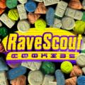 Rave Scout® Website Logo 02.png