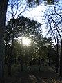 Real Parque del Buen Retiro (2806556701).jpg