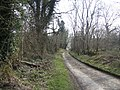 Red Lane - geograph.org.uk - 378241.jpg