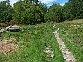 Rhu - Helensburgh, Hill House Track - geograph.org.uk - 179406.jpg
