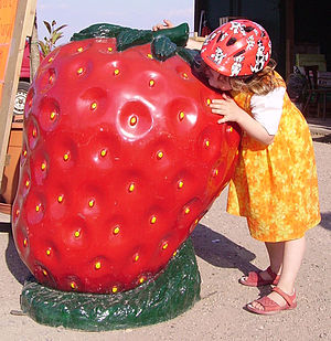 English: giant strawberry