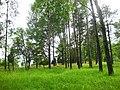 Rikalanmäen kalmisto.jpg