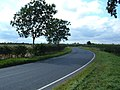 Rise Lane - geograph.org.uk - 1467849.jpg