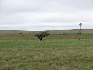 Rita Blanca National Grassland.jpg
