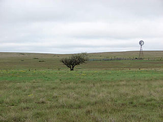 protected grassland in Texas and Oklahoma
