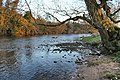 River Eden at Colby Laithes - geograph.org.uk - 1102364.jpg
