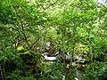 River Loy, Glen Loy - geograph.org.uk - 228408.jpg