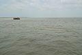 River Padma - Paturia-Daulatdia - 2015-06-01 2799.JPG