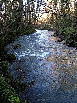 River Yealm in Rough Torrs - geograph.org.uk - 295482