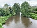 Rivière Cousin vue depuis Pont Cousin - Vault-de-Lugny (FR89) - 2021-05-17 - 3.jpg