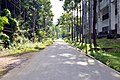 Road beside the Faculty of Science at University of Chittagong (01).jpg