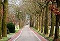 Road near Sint-Oedenrode, Netherlands, Jan. 2007 (352758560).jpg