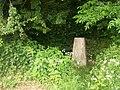 Roadside Triangulation Pillar near Clowne - geograph.org.uk - 845439.jpg