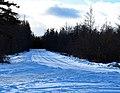 Roadway in Winter on Drummond Island.jpg