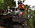 Roaring Camp Shay1 02.jpg