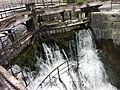 Roaring River, Galway (6047454541).jpg