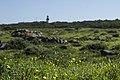 Robben island, Sudáfrica 11.jpg