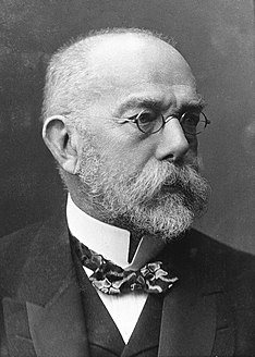 Robert Koch 19th and 20th-century German physician and bacteriologist
