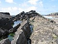 Rock pools and a distant Thorn Island - geograph.org.uk - 691601.jpg
