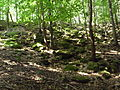 Rocks, Ondřejovsko.jpg