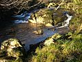 Rocks and rapids on the River Tavy - geograph.org.uk - 298127.jpg