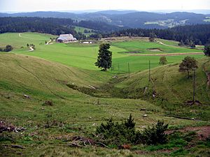 Elz (Rhine) - High valley above the V-shaped valley of the Elz (The Elzhofbächle on the Rohrhardsberg)