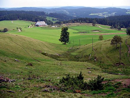 High valley above the V-shaped valley of the Elz (The Elzhofbächle on the Rohrhardsberg)