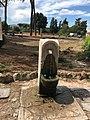 Roman wolf fountain, Celio, Roma, Italia Sep 01, 2020 12-03-35 PM.jpeg