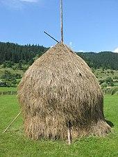 Romanian hay.jpg