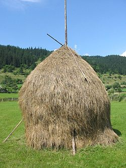 Romanian thatched haystack