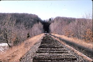 Roseville Tunnel - The eastern portal of Roseville Tunnel in 1989, five years after the tracks were removed. The hill above was partially blasted away in the aborted effort to create an open cut, not a tunnel.