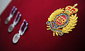 Royal Engineers Crest and LSGC Medals MOD 45153749.jpg