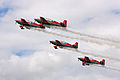 Royal Jordanian Falcons 3 (3758108708).jpg
