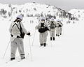Royal Marine Reservists Training in Norway MOD 45156931.jpg