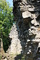 Ruine Freudenau 07.JPG