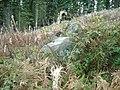 Ruins of Shepherd's Cottage - geograph.org.uk - 269794.jpg