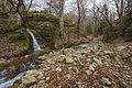 Ruisseau du Vialais, Haut-Languedoc, Rosis cf03.jpg