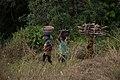 Rural women farmers.jpg