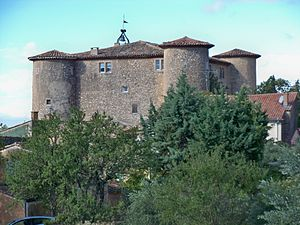 Rustrel - Château de Rustrel, which houses the town hall