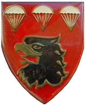 3 Parachute Battalion - SANDF 3 Para emblem