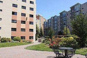 San Francisco State University Wikipedia