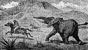 Explorer and large game hunter Samuel Baker chased by an elephant.