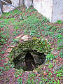 Sacred Well Garlo BG.jpg