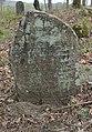 Salantai Jewish Cemetery 2016 (12).JPG