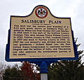 Salisbury Plain historic marker - Fairfax County, Virginia.jpg