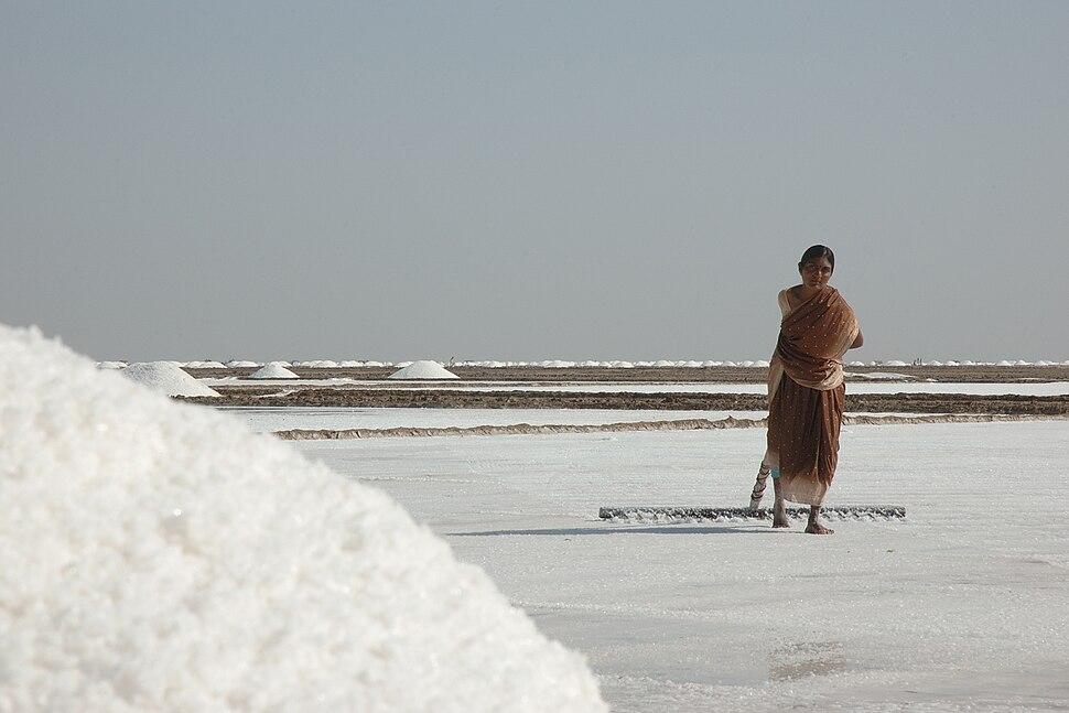 Salt worker in Rann of Kutch