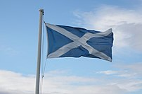 Saltire flag in the wind
