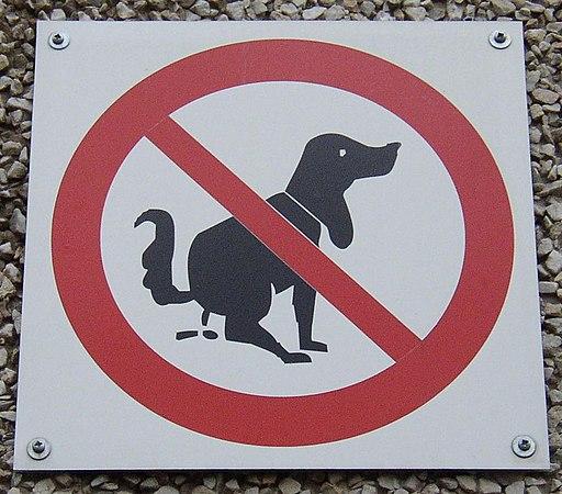Schild Hundehaufen 3